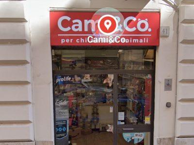 Negozio per animali, Pet Shop, Roma Prati Piazza Cavour